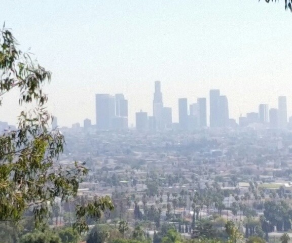 6163 Temple Hill, View Lot in Hollywood Hills, CA 90068 SOLD!
